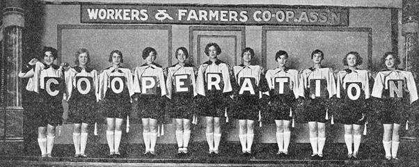 La coopérative d'activités et d'emploi : entreprise collective
